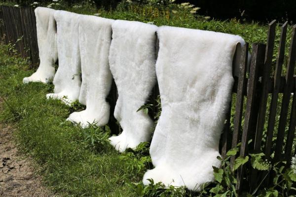 Lammfell Weiß Kurzhaar Wollhöhe 3-4 cm