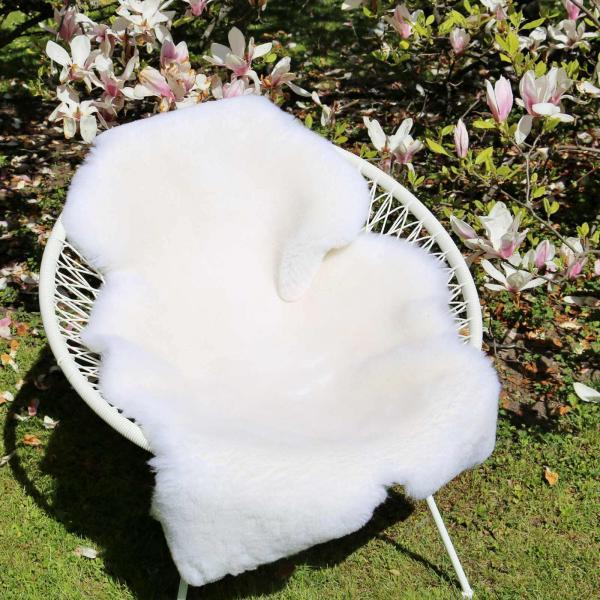 sheepskin white shorn