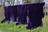 Premium Merino Lammfell Schaffell violett geschoren 80-90