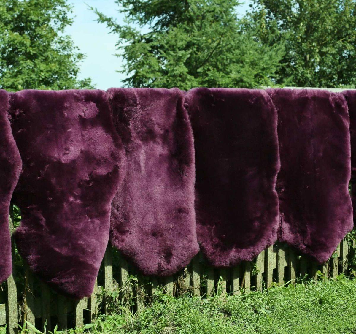 lammfell schaffell flieder voll waschbar deko sitzunterlage ebay. Black Bedroom Furniture Sets. Home Design Ideas